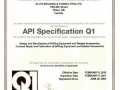 API Q1-0264